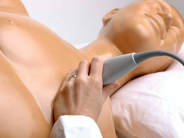 Transthoracic Echocardiography and Pericardiocentesis Ultrasound Training Model