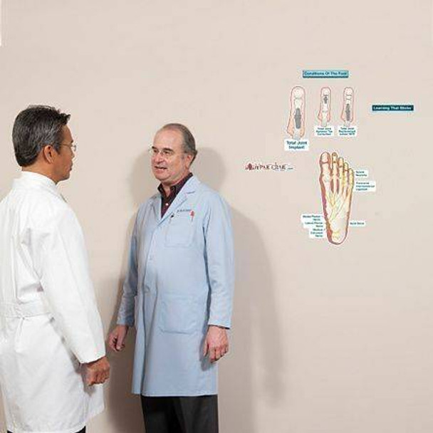 Conditions of the Foot Anatomy Dry-Erase Sticky Wall Chart - 27 in x 40 in - Series 2