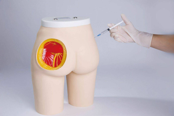 Anatomy Lab Buttock Injection Model