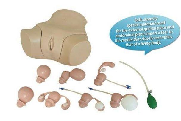 KOKEN Gynecological Examination Simulator