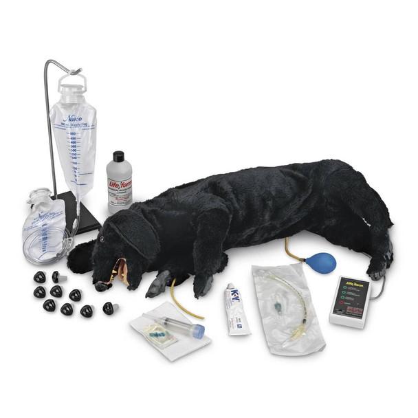Life/form Advanced Sanitary CPR Dog