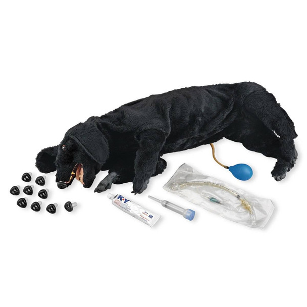 Life/form Basic Sanitary CPR Dog