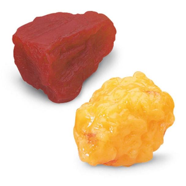 Nasco 1-lb Fat and 1-lb Muscle Replicas
