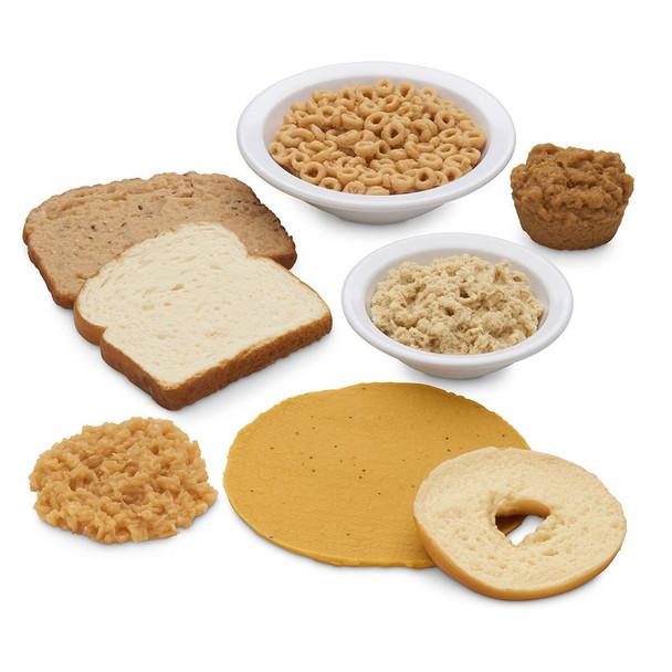 Nasco Basic Grains Food Replica Kit