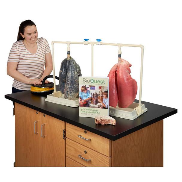 BioQuest Dual Lungs Comparison Kit, Preserved