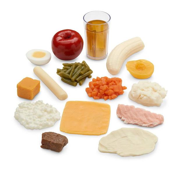 Nasco Limited-Intake Food Replica Kit