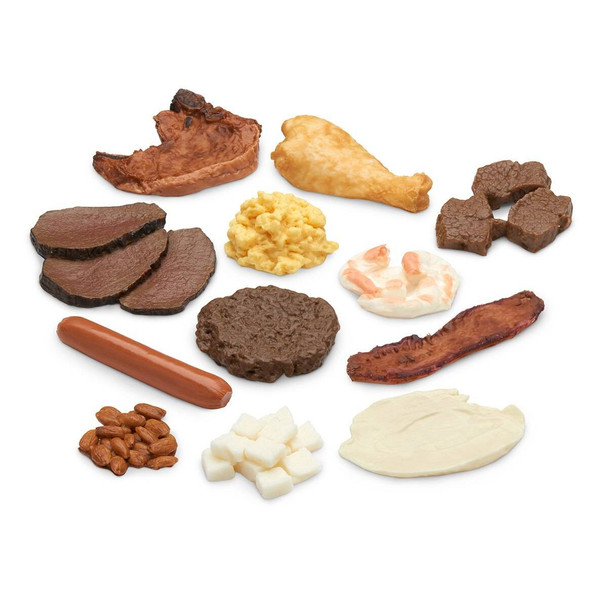 Nasco Big Protein Food Replica Kit