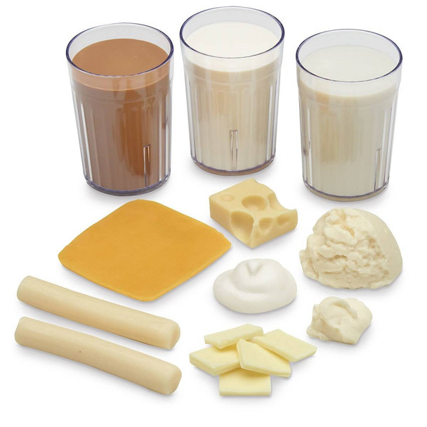 Nasco Big Milk Food Replica Kit