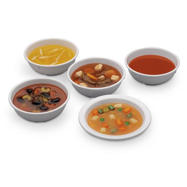 Nasco Soup Food Replica Set