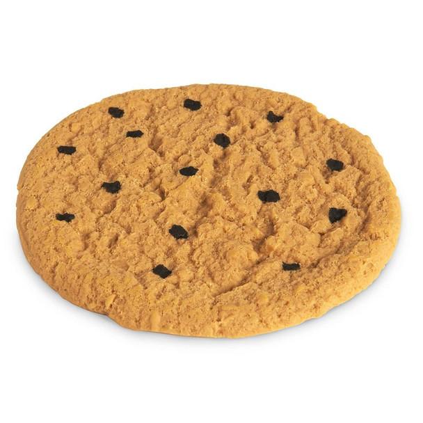 Nasco Cookie Food Replica - Chocolate Chip - 4 in dia 10 cm