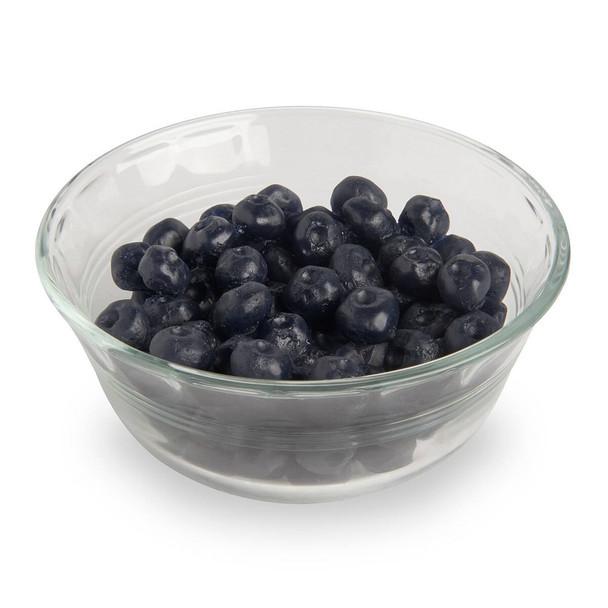 Nasco Blueberries Food Replica - 3/4 cup