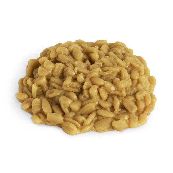 Nasco Sunflower Kernels Food Replica - 1/4 cup