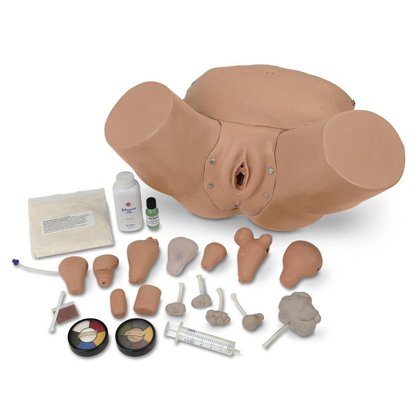 Life/form Advanced Pelvic Examination and Gynecological Simulator