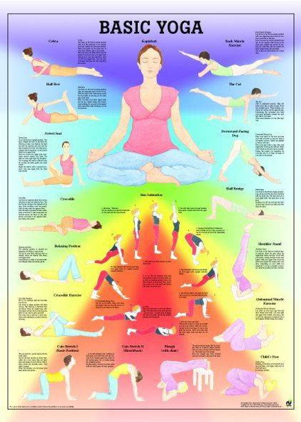 Yoga Basic Laminated Fitness Poster