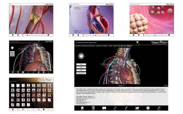 Visible Body Human Heart and Circulatory Premium Software PC or Mac Download