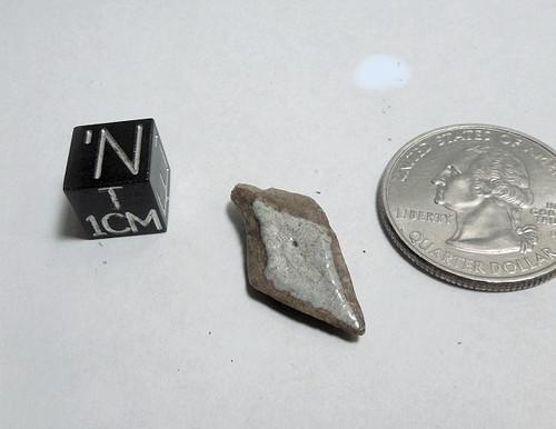 Fossil Gar Fish Scale, Lepisosteidae sp, Peace River, Bone Valley