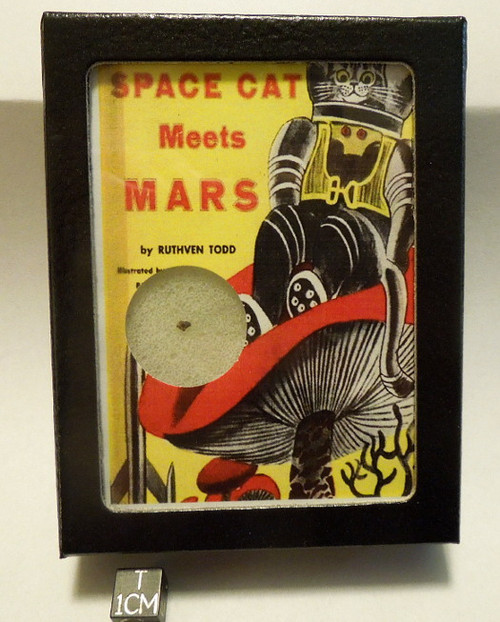 Mars Rock Display, Retro Space Cat, Martian Meteorite