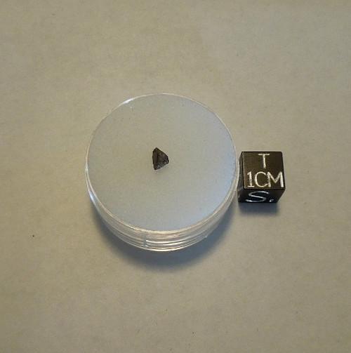 Dawn(a), H6 Chondrite, Randall County Texas, Micromount