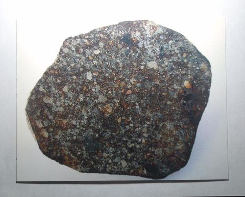 NWA 869 Meteorite Postcard
