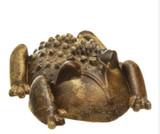 Chew-A-Bulls Horned Toad Medium