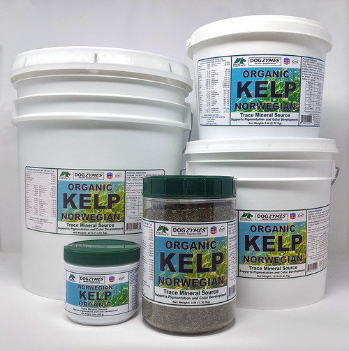 Dogzymes Organic Norwegian Kelp