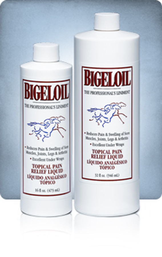 Bigeloil Liniment 16 oz