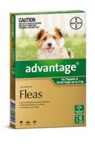 Advantage for Dogs 0-4 kg - Green 6 Pack
