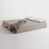 Diplomat Sleeper Sofa by Blu Dot