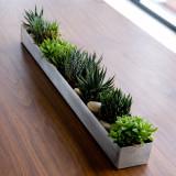 Houseplant Trough by Gus Modern