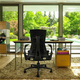 Embody Chair - In Stock