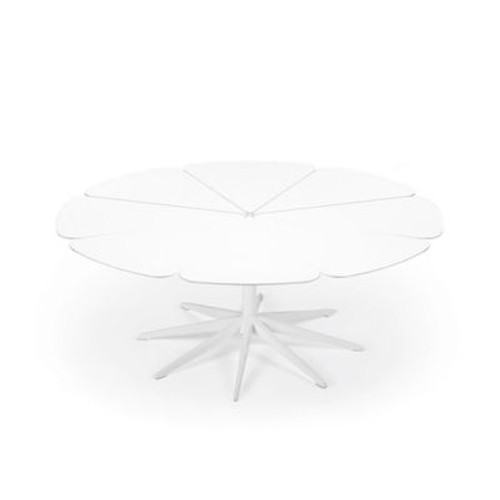 Richard Schultz Petal Coffee Table by Knoll
