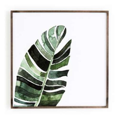 Jess Engle Banana Leaf