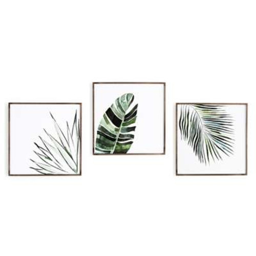 Jess Engle Botanicals In Watercolor