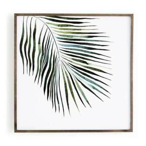 Jess Engle Palm