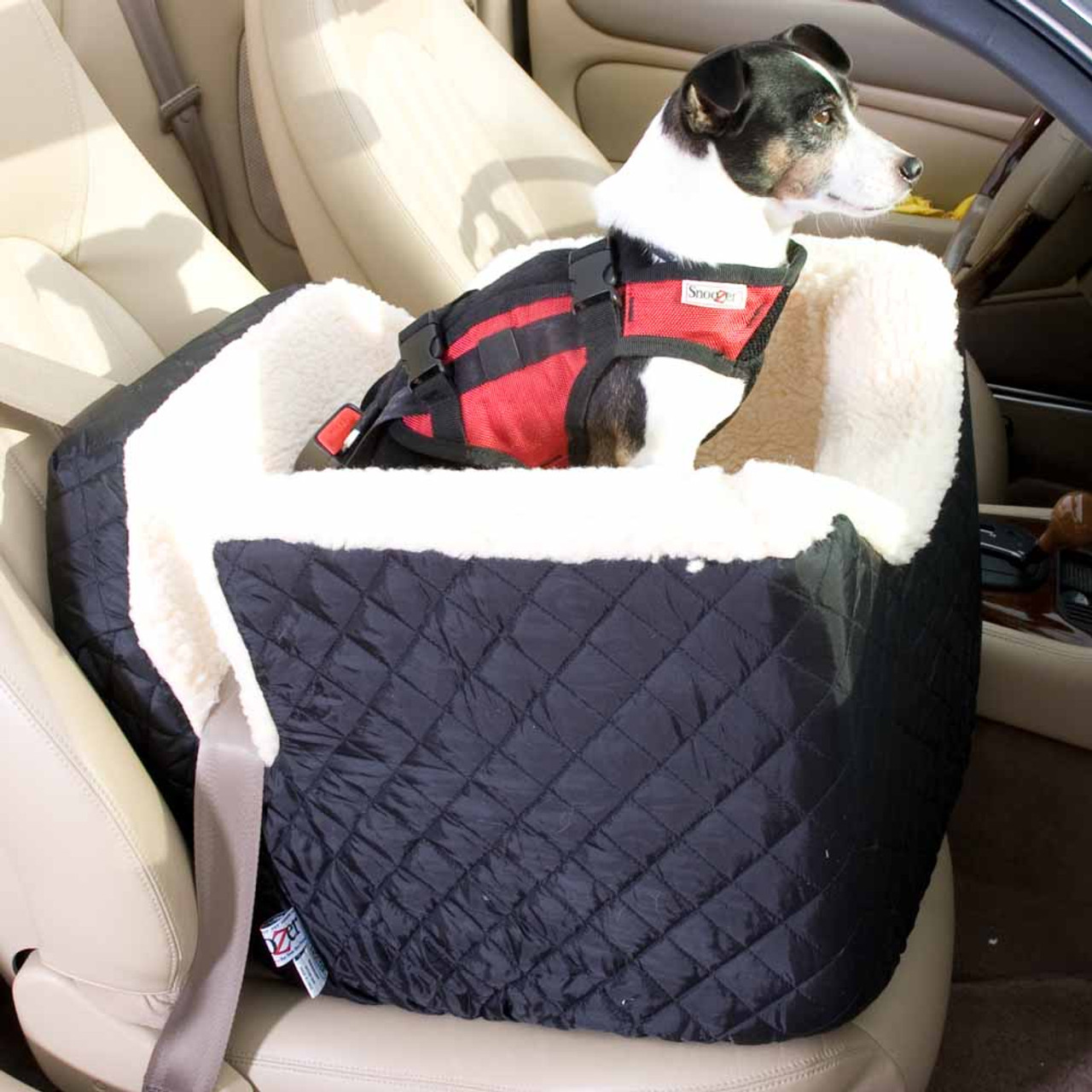 Booster Pet Car Seat - CHIHUAHUA LAND