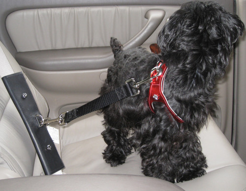 The PawRider is a leather Pet Seat Belt Adapter with Tether Connector