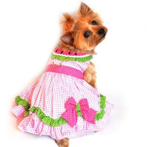 Watermelon Harness Dog Dress