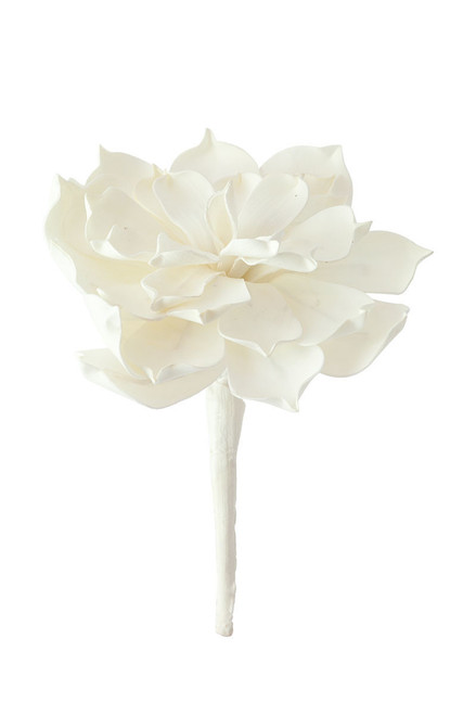 Large White Flower Botanica
