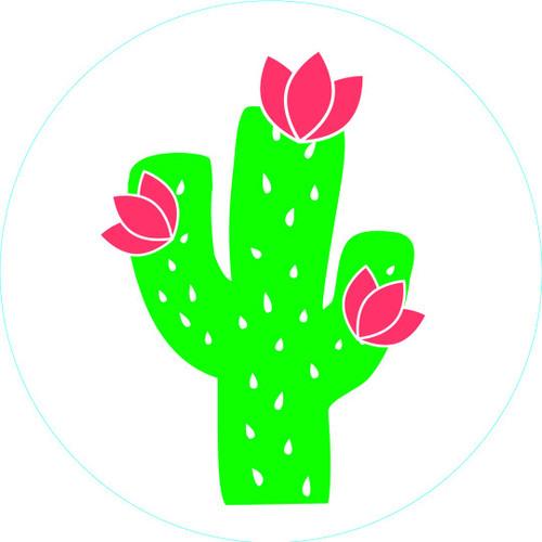 Cactus Bogg Bit
