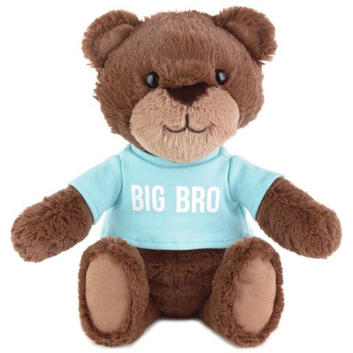 Big Brother Stuffed Animal Bear with Tee