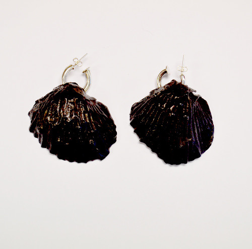 Black Shell Earrings
