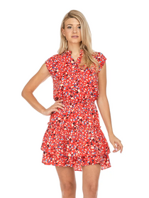 Cinch Waist Flared Hem Dress- Red Brush Print