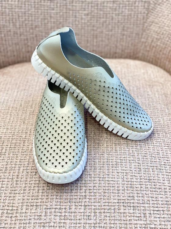 Tulip Slip-On Shoe- Gold