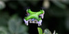 2016 New Product Dron Mini 2.4G 4CH Pocket Drone 3D Roll Light Handheld Toy Remote Control Helicopter for Kids