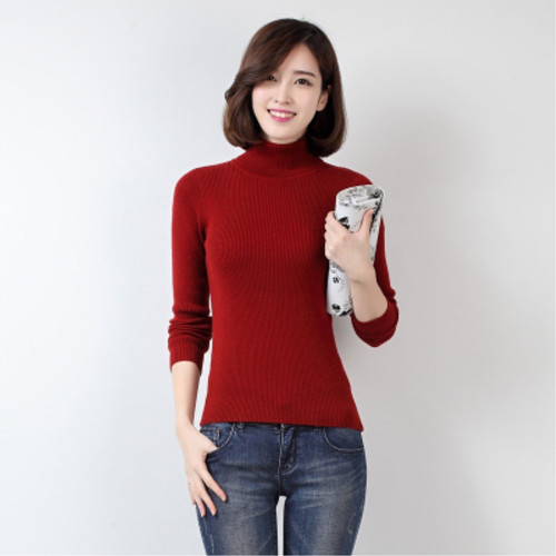 Autumn and Winter New Cashmere Sweater Women High Collar Pullover Fashion Slim Sweater Warm Bottom Sweater Short Sprout