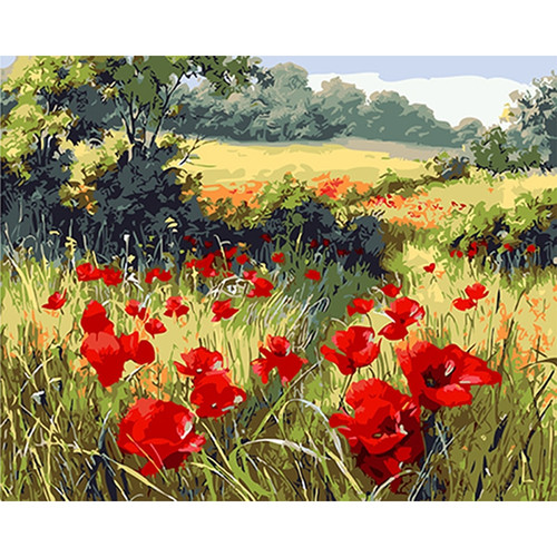 40*50 cm with Frame hand painted diy painting by numbers paint by number Red poppy pictures oil painting for home decor TF60