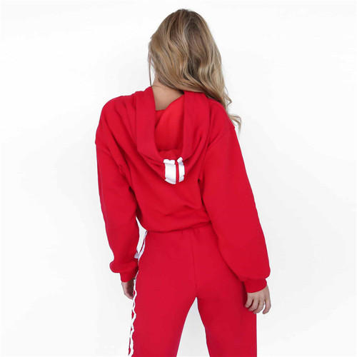 AmberHeard 2017 Spring Autumn Women Sporting Suit Set Hooded Sweatshirt+Pant Sweatsuit Two Piece Set Tracksuit For Women Clothes
