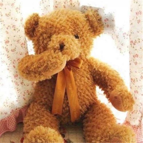 55cm Baby Kids Shy Bear Toy Sleeping Comfort Doll Plush Toy Soft Stuffed Animal Appease Teddy Bear Toy Z137