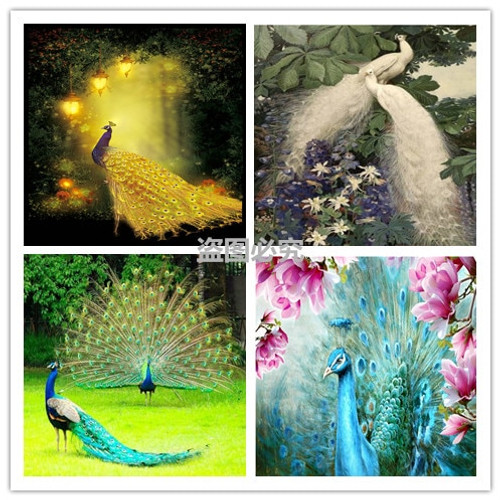DIY 5D Round Diamond Painting White Peacock Love Cross Stitch Kits Diamond Mosaic Full Diamond Embroidery Patterns Rhinestones