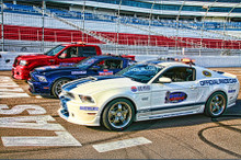 """Shelby Mustangs & Truck LV Speedway Steel Sign 11"""" x 17"""""""